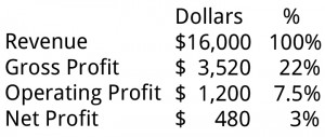 Net Profit Margin Example