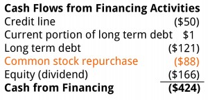 Cash Flow Statement Financing Section